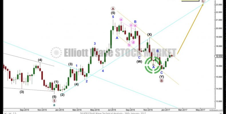 Silver Elliott Wave and Technical Analysis — 25th January, 2017.