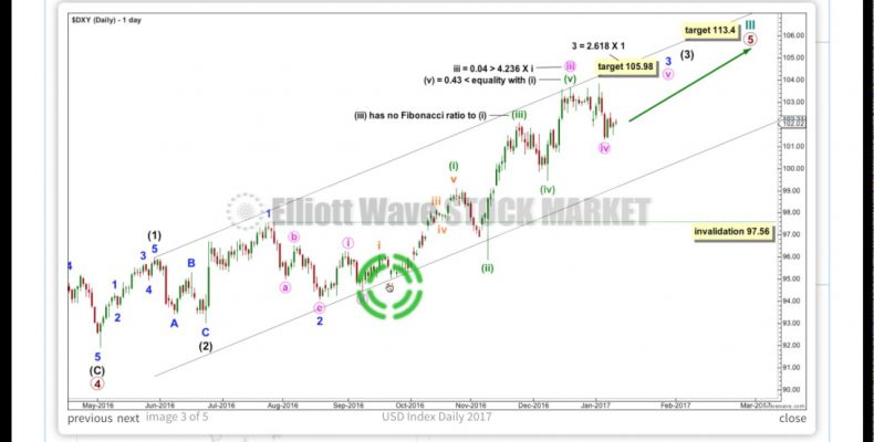 US Dollar Index Elliiott Wave and Technical Analysis 10th January 2017