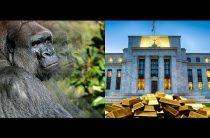 ФРС и цены на золото: не пропустите «Невидимую гориллу»