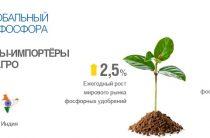 Акции «Фосагро» будут расти, если почва останется плодородной