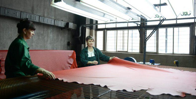 НаВяземском кожевенном заводе вСмоленской области открыто производство натуральных кож