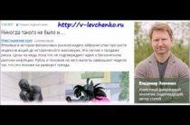 Владимир Левченко — Рубль: похоже на разворот тренда (17.02.2017)
