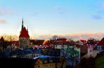 Эстония запустила стартап-визы для иностранных предпринимателей и специалистов